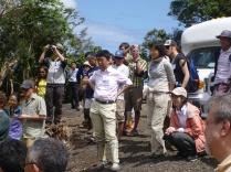 Taro at the taro plantation!